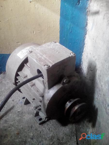 motor electrico trifacico 2