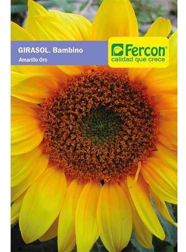 Semillas De Girasol Gigante Certificada Importada Nuevas 0