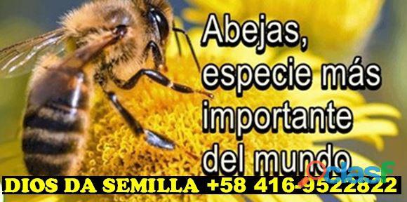 ANALISIS DE SUELO CON FINES AGRICOLAS 04169522822 DIOS DA SEMILLA 2