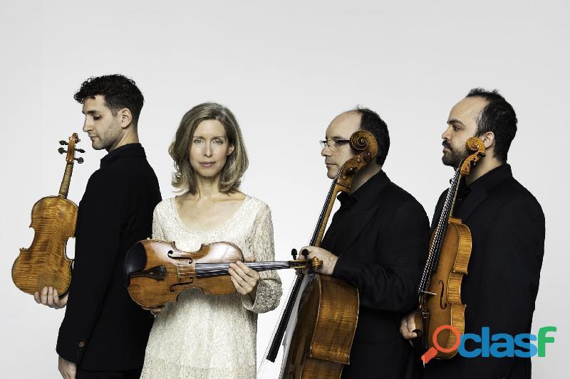 violines de ensueño en maracaibo 2