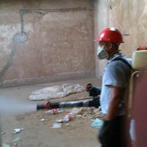 Empresa de servicio de fumigacion e insecticida