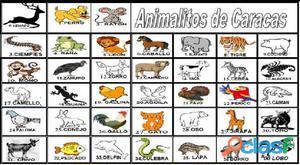 Resultado de imagen para venezuela loteria de animalitos