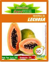 Venta y asesoría. semillas de Hortalizas y frutales.
