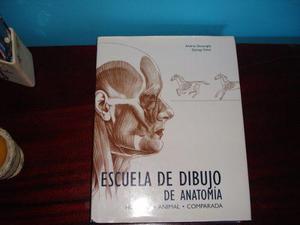 ESCUELA DE DIBUJO DE ANATOMÍA: HUMANA, ANIMAL, COMPARADA EN LIBERTADOR-ARAGUA