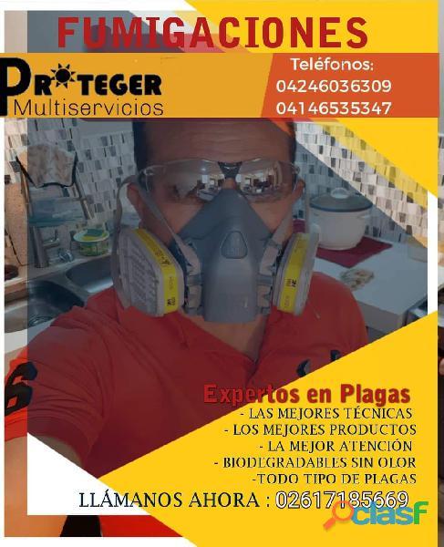 Expertos en Fumigaciones Control de Insectos y Roedores