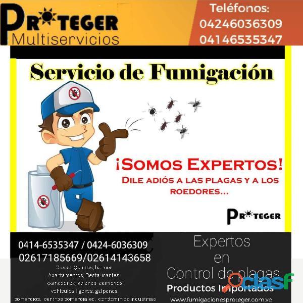 Control Integral de Plagas Fumigaciones en Maracaibo
