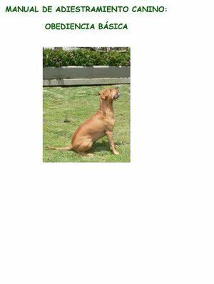 Manual de adiestramiento canino perros