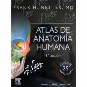 Atlas de anatomia netter 6ta edición pdf alta calidad