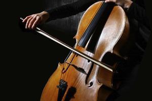 Se dictan clases de musica y violoncello