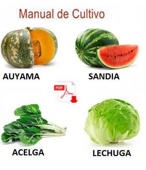 Kit cultivo auyama, patilla, acelga, lechuga+guia semilleros