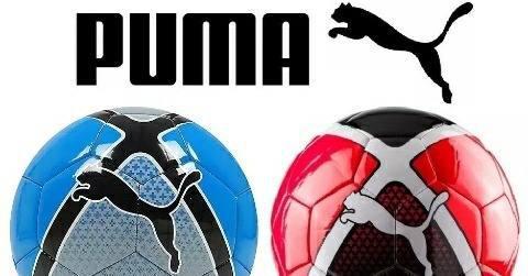 Oferton Pelotas Puma Futsal Bote Bajo Profesional Original