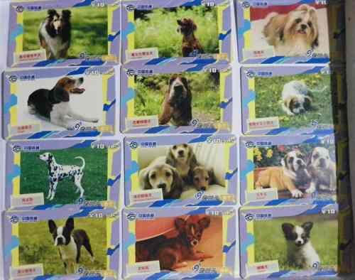 Tarjetas telefonicas colección serie animales perros