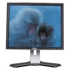 Monitor 17 lcd dell