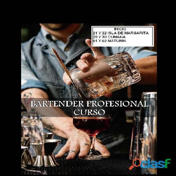 Curso internacional de bartender profesional