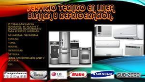 Servicio tecnico en reparacion y mantenimiento en linea