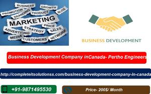 Business development services in canada