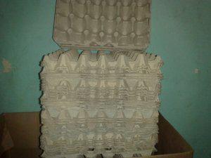 Venta de separadores de huevos (cartones