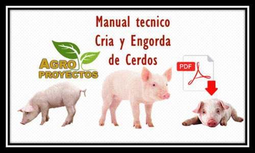 Manual tecnico cria y engorde de cerdos + premio