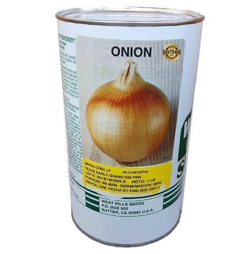 Semillas de cebolla lata 452 gramos certificadas
