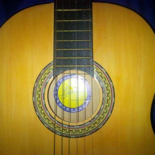 Guitarra acustica marca blester