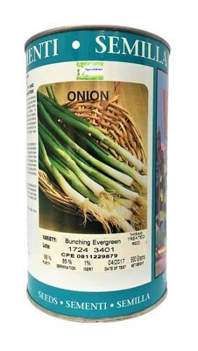 Semillas cebollin westar latas 500 gr con guia de cultivo