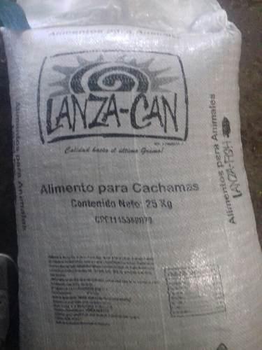 Lanza can fhis alimento para cachama