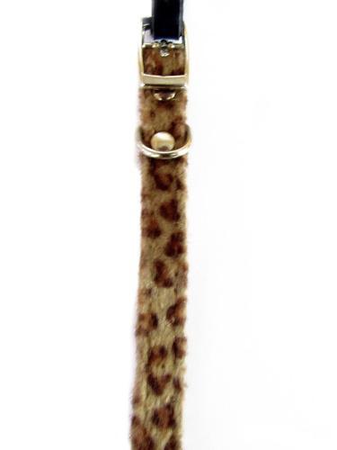 Collar importado para gatos marca puppy & co