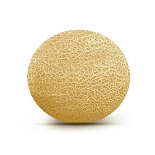 Semillas certificada seminis melon magellan patilla delta