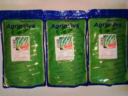 Semillas de patilla crimson sweet (12.000 semillas)