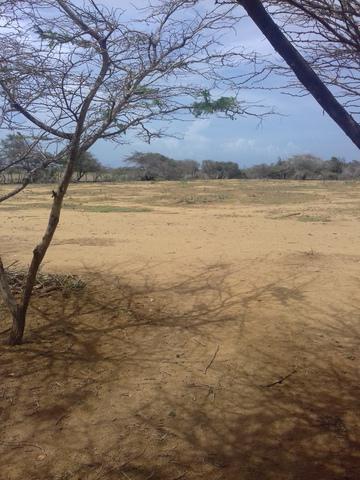 Terreno de 2 hectáreas cerca de la playa