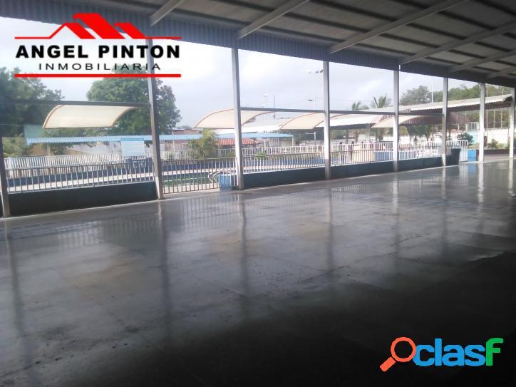 Acción de club social venta obelisco de barquisimeto api 205