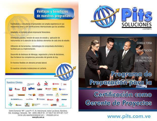 Cursos gerencia de proyectos (project manager)