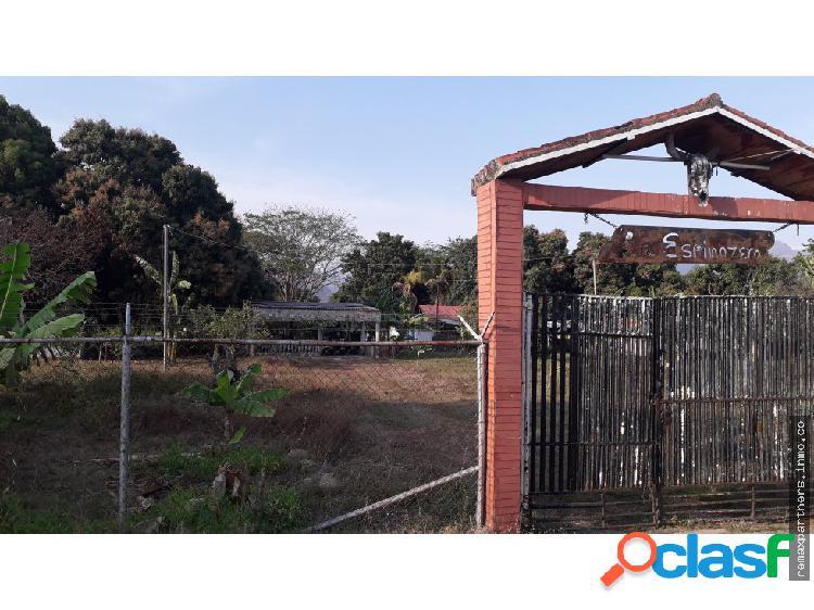 Terreno sector el avispero, guacara.