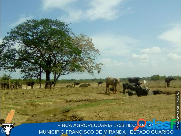Finca agropecuaria de 1738 hectáreas. edo. guarico