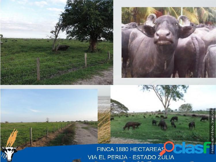 Finca de 1880 hectáreas vía el perijá edo. zulia