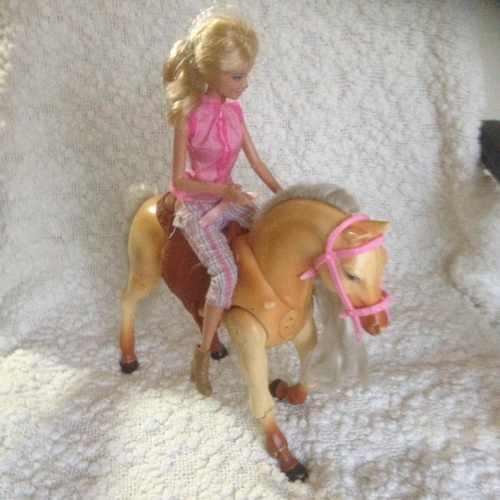 Lote 25 muñec@s barbie ken accesorios y + en remate