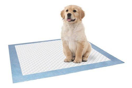 Colector de heces y orina para perros super higienico