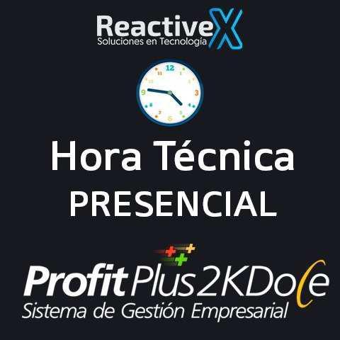 Profit plus 2k8 2k12 hora soporte presencial asesoria