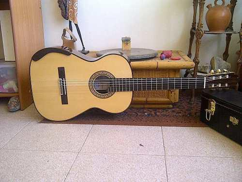Guitarra clasica profesional