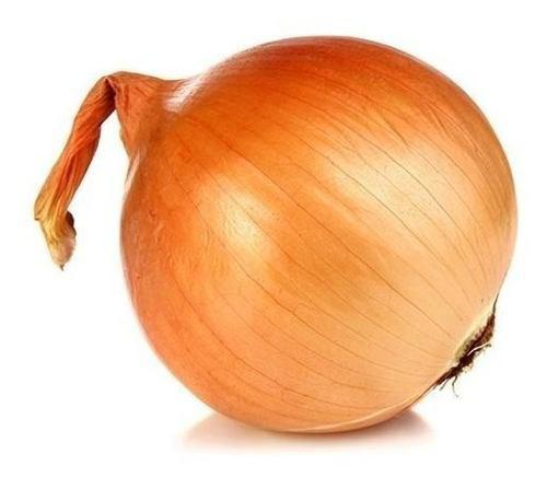 Semillas cebolla texas 502 sobres 5 gr con guia de cultivo