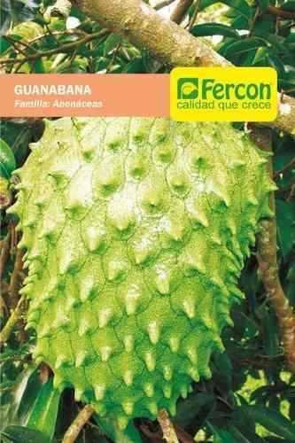 Semillas de guanabana gigante importada sobre de 50 semillas