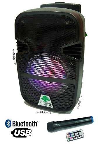 Corneta amplificada karaoke bluetooth pendrive tienda chacao