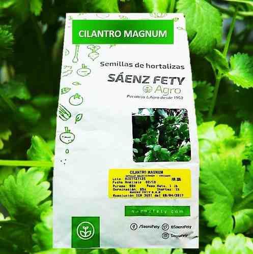 Semillas de cilantro magnum 500gr