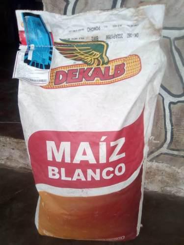 Semillas de maiz blanco certificadas dekalb