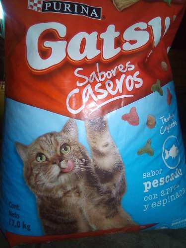 Gatarina marca gatsy
