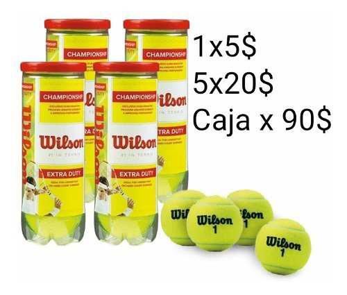 Pelotas de tenis wilson championship extra duty felt
