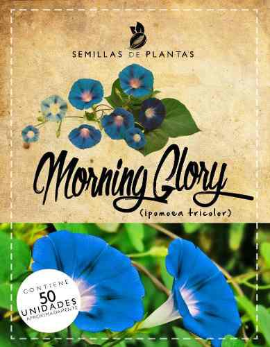 1 sobre de semillas de enredaderas de flores azules