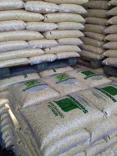 Semillas certificadas de maíz blanco