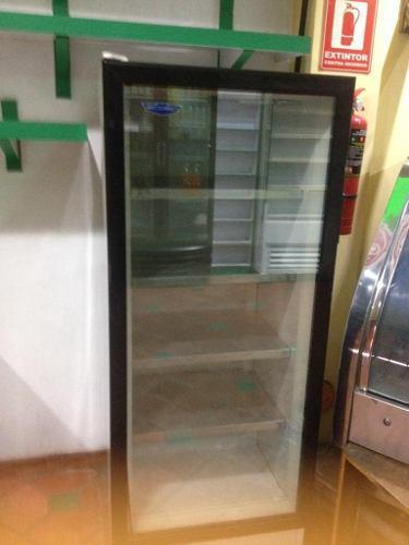 Congelador vertical para carnes, helados, pastelitos, pollo