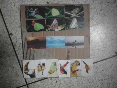 Tarjetas telefonicas de cantv usadas temas mariposas,aves,